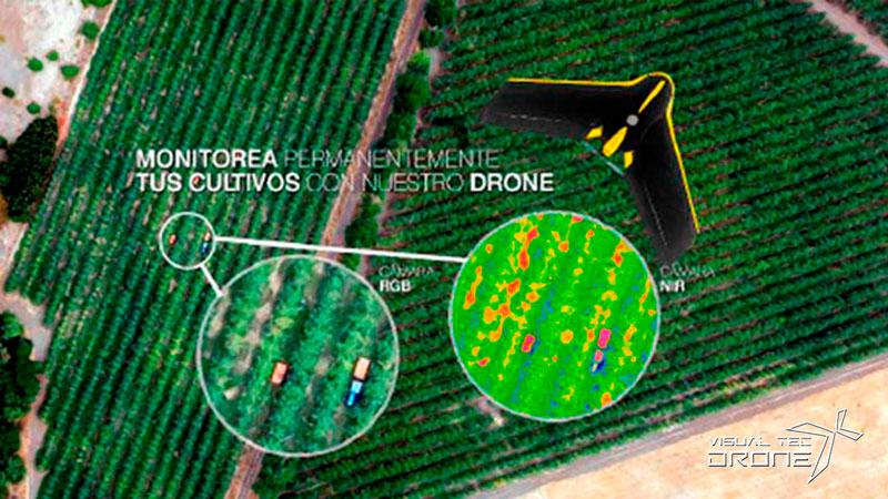 Estudio de cultivo con drones