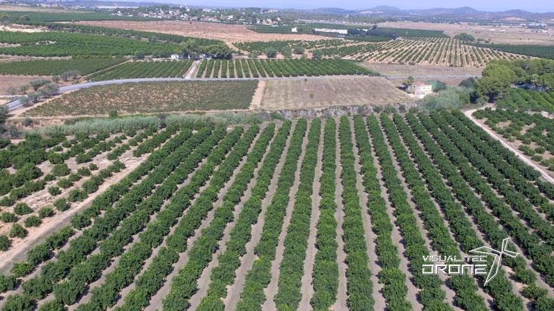 Agricultura de precisión, inspecciones con drones